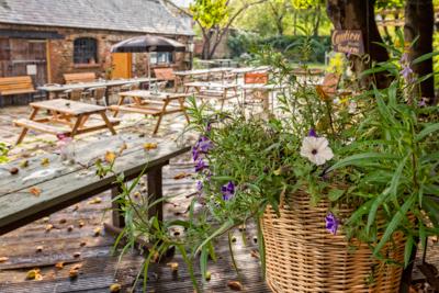 The Pomfret Arms garden